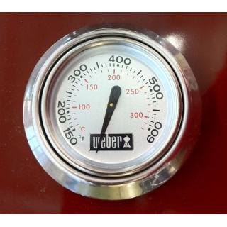Thermometer mit Rosette ab 2010